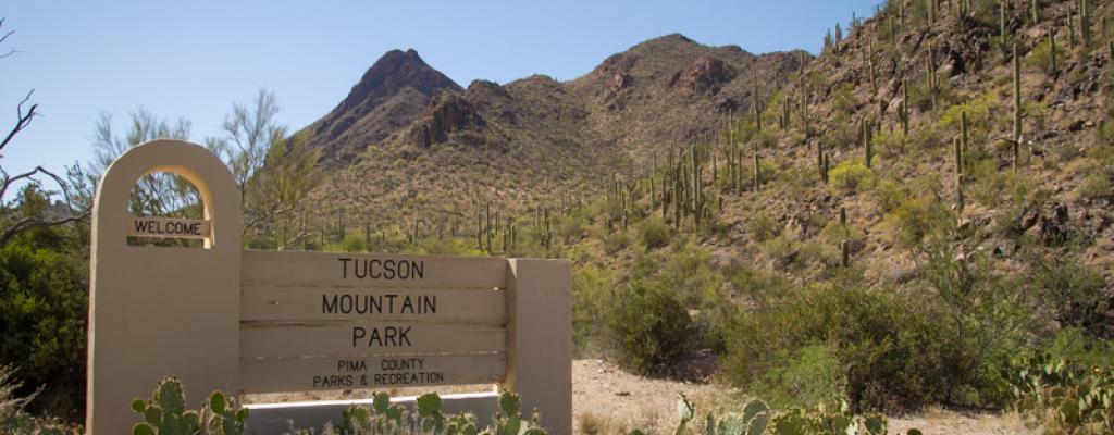 Tucson mountain park wedding