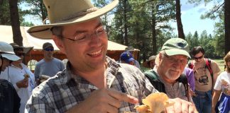 Mushroom Fest and Foray Flagstaff